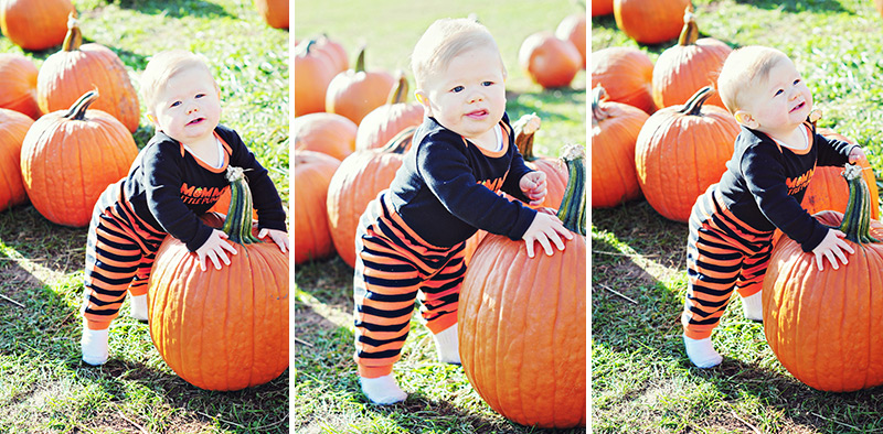 portraits of baby standing by pumpkin
